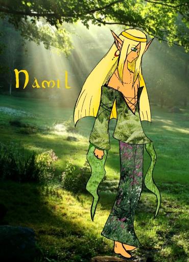 Elfes Fées Les Chevaliers D Emeraude En Manga